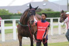 timaru-races-0017