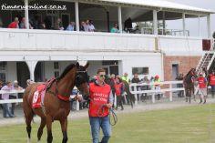 timaru-races-0025