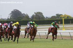 timaru-races-0074
