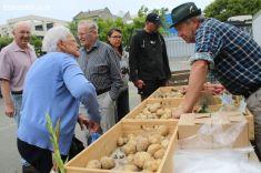 farmers-market-0018