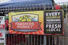 farmers-market-0036