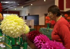 horticultural-society-show-0002