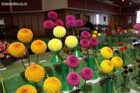 horticultural-society-show-0004