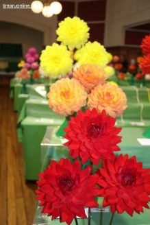 horticultural-society-show-0005