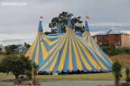 zirkas-circus-0007