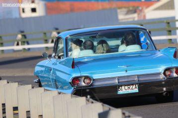 Rock n Hop Car Parade 00100