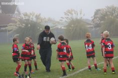 Junior Rugby Kicks Off 00014