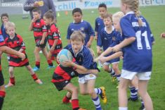 Junior Rugby Kicks Off 00058