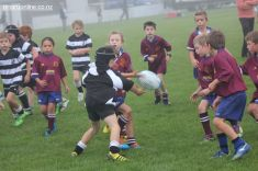 Junior Rugby Kicks Off 00080