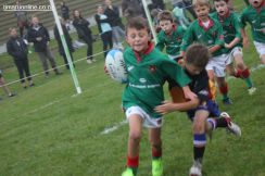 Junior Rugby Kicks Off 00102