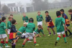 Junior Rugby Kicks Off 00103
