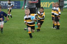 Junior Rugby Kicks Off 00143