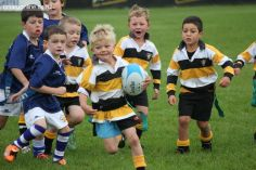 Junior Rugby Kicks Off 00150