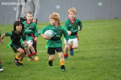 Junior Rugby Kicks Off 00162