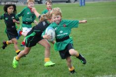 Junior Rugby Kicks Off 00164