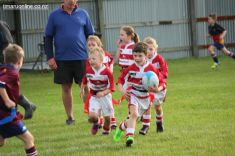 Junior Rugby Kicks Off 00194