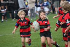 Junior Rugby Kicks Off 00217