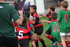 Junior Rugby Kicks Off 00219