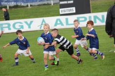 Junior Rugby Kicks Off 00228