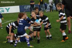 Junior Rugby Kicks Off 00229