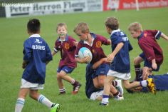 Junior Rugby Kicks Off 00246