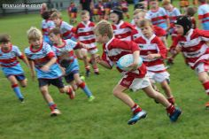Junior Rugby Kicks Off 00257
