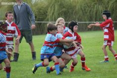 Junior Rugby Kicks Off 00269