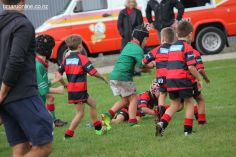 Junior Rugby Kicks Off 00271
