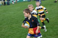 Junior Rugby Kicks Off 00291
