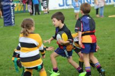 Junior Rugby Kicks Off 00292