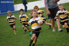 Junior Rugby Kicks Off 00294