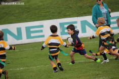 Junior Rugby Kicks Off 00301