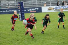 Junior Rugby Kicks Off 00303