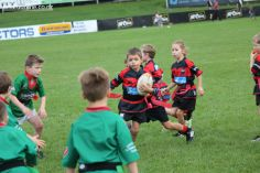 Junior Rugby Kicks Off 00304