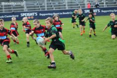 Junior Rugby Kicks Off 00306