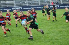 Junior Rugby Kicks Off 00306