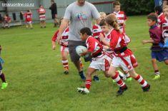 Junior Rugby Kicks Off 00311