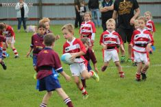 Junior Rugby Kicks Off 00316