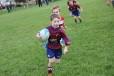Junior Rugby Kicks Off 00322