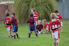 Junior Rugby Kicks Off 00324
