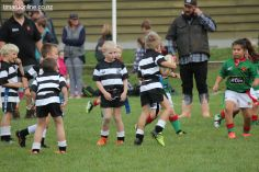 Junior Rugby Kicks Off 00325