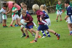 Junior Rugby Kicks Off 00326