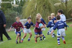 Junior Rugby Kicks Off 00327