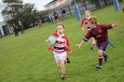 Junior Rugby Kicks Off 00351