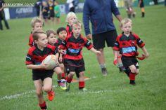 Junior Rugby Kicks Off 00423