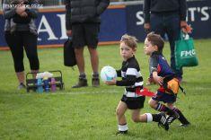 Junior Rugby Kicks Off 00436