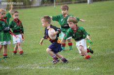 Junior Rugby Kicks Off 00442