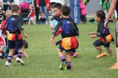 Junior Rugby Kicks Off 00446