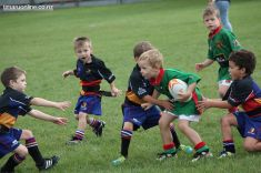 Junior Rugby Kicks Off 00448
