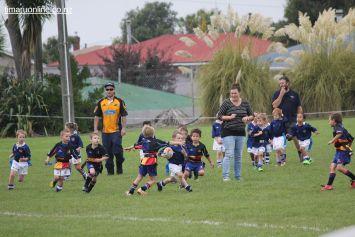 Junior Rugby Kicks Off 00483